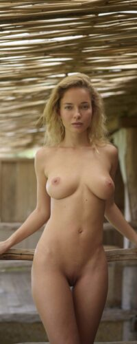Natali Andreeva5442